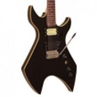 Elektro Gitarlar