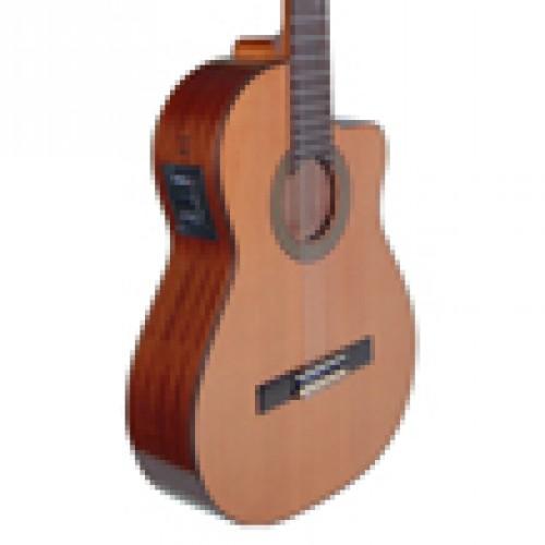 Profesyonel Gitarlar