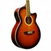 Elektro Akustik Gitarlar